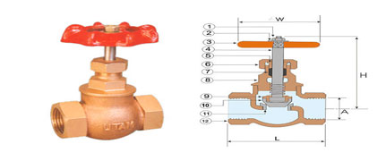 BRONZE GLOBE VALVES NO. 5